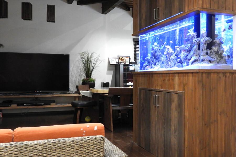 画像:海水魚の水槽|埼玉県 個人宅様