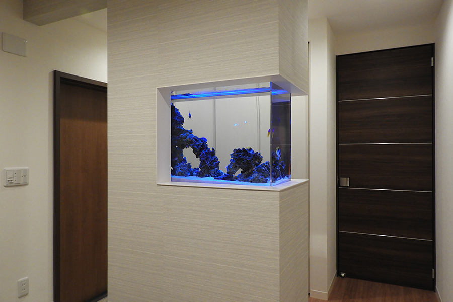 画像:海水魚水槽設置施工事例